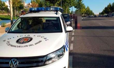 Evolución de la tasa de delitos en Paracuellos de Jarama